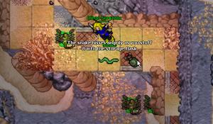 The Gravedigger of Drefia Quest/Spoiler – Tibia Wiki